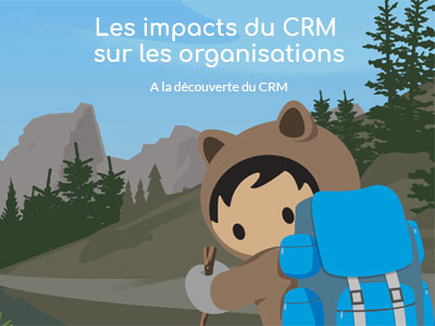 Les impacts du CRM sur les organisations. [A la découverte du CRM : 2/4]